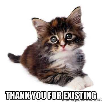fyeahpussycats -  thank you for existing