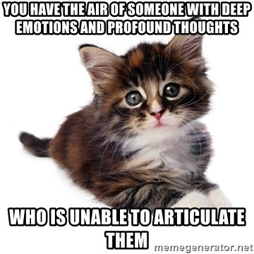 fyeahpussycats - You have the air of someone with deep emotions and profound thoughts who is unable to articulate them