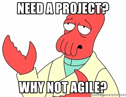 Why not zoidberg? - Need a project? Why not agile?