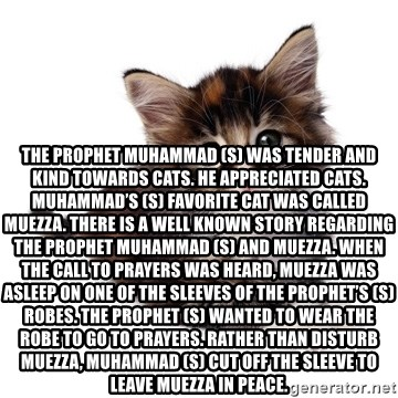 fyeahpussycats -  The Prophet Muhammad (s) was tender and kind towards cats. He appreciated cats. Muhammad's (s) favorite cat was called Muezza. There is a well known story regarding the Prophet Muhammad (s) and Muezza. When the call to prayers was heard, Muezza was asleep on one of the sleeves of the Prophet's (s) robes. The Prophet (s) wanted to wear the robe to go to prayers. Rather than disturb Muezza, Muhammad (s) cut off the sleeve to leave Muezza in peace.