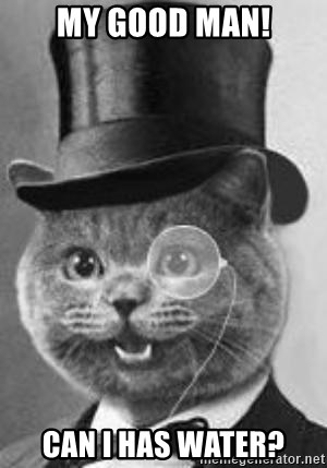 Monocle Cat - My good man! can i has water?