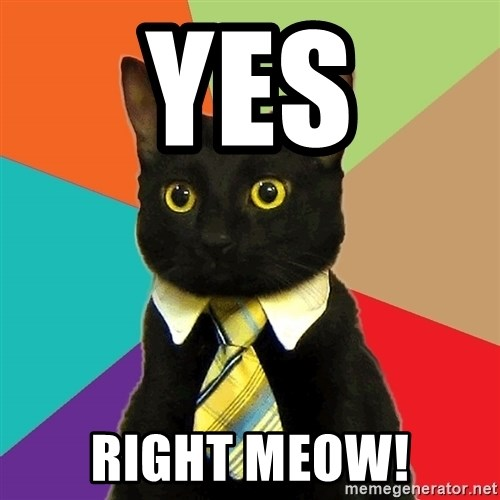 Business Cat - yes right meow!