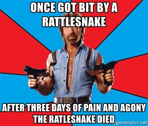 Chuck Norris  - once got bit by a rattlesnake after three days of pain and agony the ratlesnake died