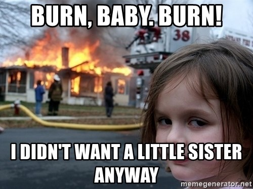 Disaster Girl - burn, baby. Burn! I didn't want a little sister anyway