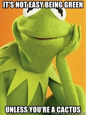 Kermit the frog - IT'S NOT EASY BEING GREEN UNLESS YOU'RE A CACTUS