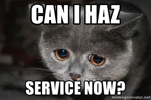 Sadcat - CAN I HAZ SERVICE NOW?