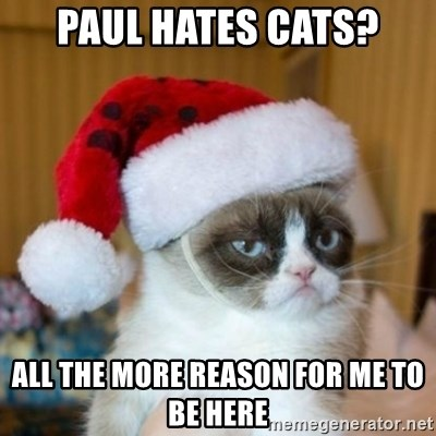 Grumpy Cat Santa Hat - Paul Hates Cats? All the more reason for me to be here