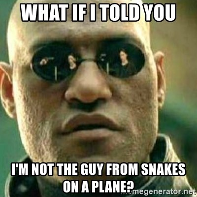 What If I Told You - WHAT IF I TOLD YOU I'M NOT THE GUY FROM SNAKES ON A PLANE?