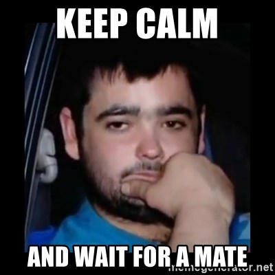 just waiting for a mate - Keep calm And wait for a mate