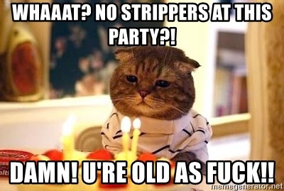 Birthday Cat - Whaaat? no strippers at this party?! DAMN! U'RE OLD AS FUCK!!