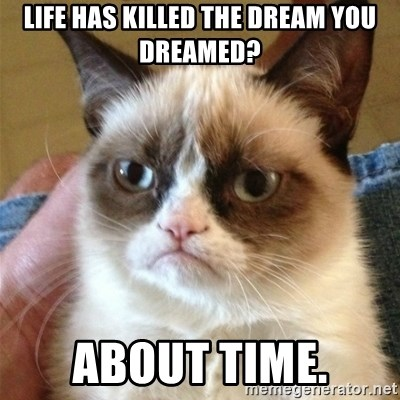 Grumpy Cat  - Life has killed the dream you dreamed? About time.