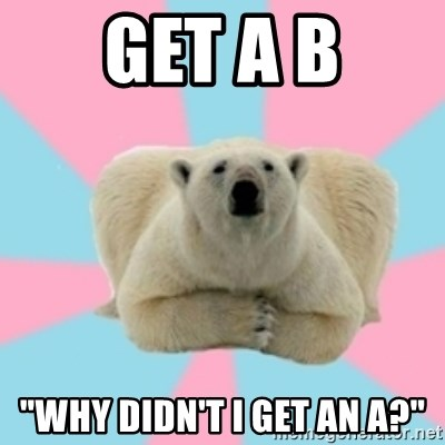 "Perfection Polar Bear - GET A B ""WHY Didn't i get an A?"""