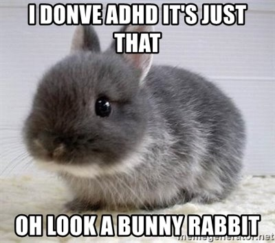ADHD Bunny - i donve adhd it's just that oh look a bunny rabbit