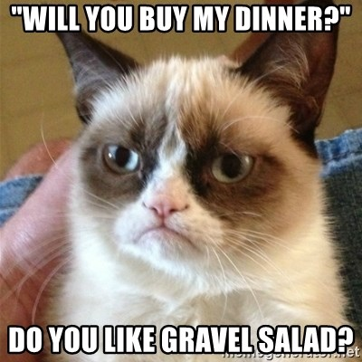 """Grumpy Cat  - """"will you buy my DiNner?"""" Do you like gravel salad?"""