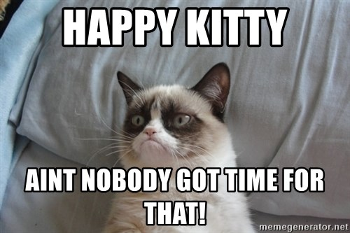 Grumpy cat good - HAPPY KITTY AINT NOBODY GOT TIME FOR THAT!