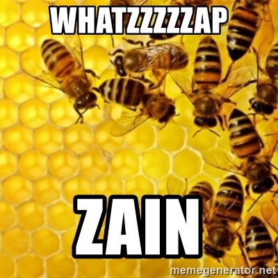 Honeybees - WHATZZZZZAP ZAIN