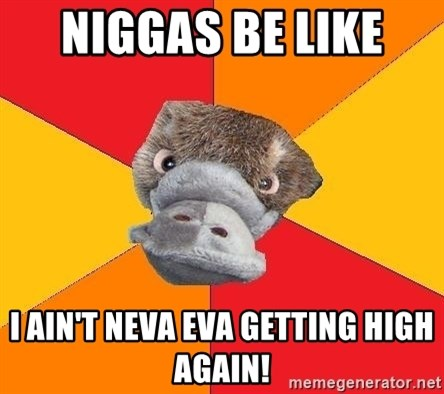 Psychology Student Platypus - NIGGAS BE LIKE  I AIN'T NEVA EVA GETTING HIGH AGAIN!