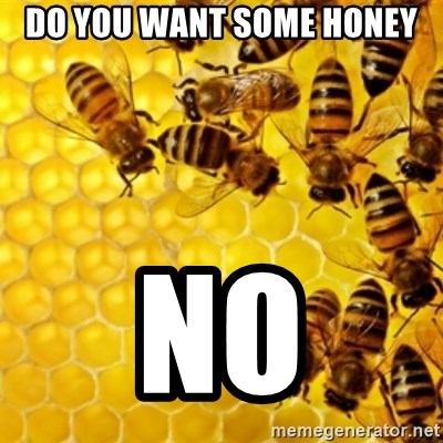 Honeybees - DO YOU WANT SOME HONEY NO