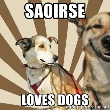 Stoner dogs concerned friend - SAOIRSE LOVES DOGS