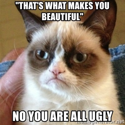 """Grumpy Cat  - """"THAT'S WHAT MAKES YOU BEAUTIFUL"""" NO YOU ARE ALL UGLY"""