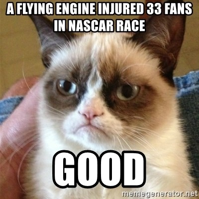 Grumpy Cat  - a flying engine injured 33 fans in nascar race good