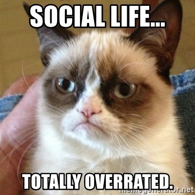 Grumpy Cat  - SOCIAL LIFE... totally overrated.