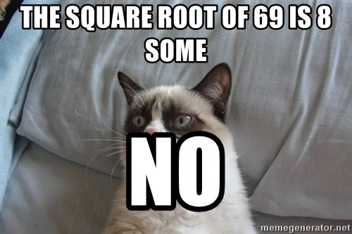 Grumpy cat good - THE SQUARE ROOT OF 69 IS 8 SOME NO