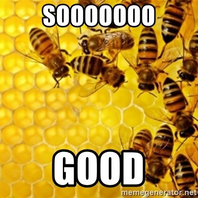 Honeybees - SOOOOOOO GOOD