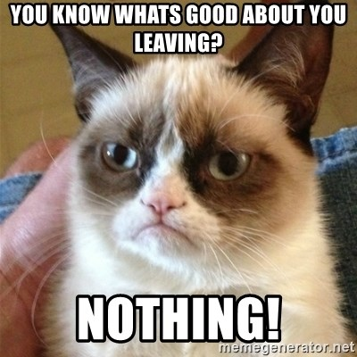 Grumpy Cat  - you KNOW WHATS GOOD ABOUT YOU LEAVING? NOTHING!