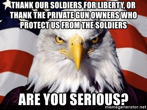 American Pride Eagle - Thank OUR SOLDIERS FOR LIBERTY, OR THANK THE PRIVATE GUN OWNERS WHO PROTECT US FROM THE SOLDIERS ARE YOU SERIOUS?