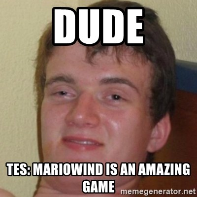 10guy - dude TES: mariowind is an amazing game