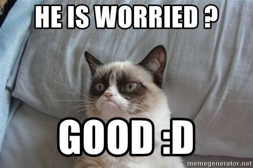 Grumpy cat good - He is worried ? Good :D