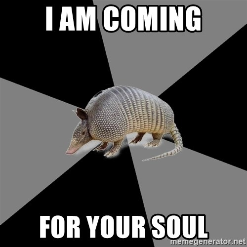 English Major Armadillo - I am coming For your soul