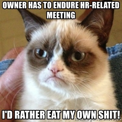 Grumpy Cat  - OWNER HAS TO ENDURE HR-RELATED MEETING I'D RATHER EAT MY OWN SHIT!