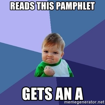 Success Kid - reads this pamphlet gets an a