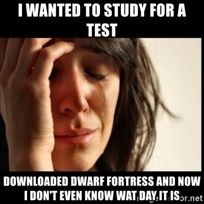 First World Problems - I wanted to study for a test Downloaded dwarf fortress and now I don't even know wat day it is