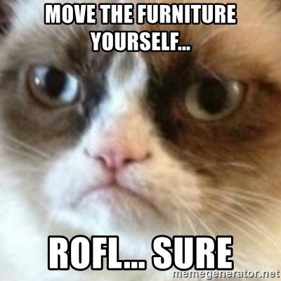 angry cat asshole - mOVE THE FURNITURE YOURSELF... rofl... sURE