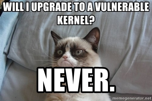 Grumpy cat good - will i upgrade to a vulnerable kernel? Never.