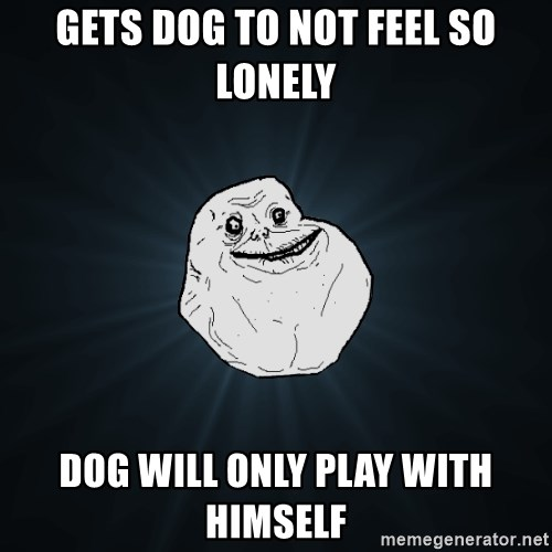 Forever Alone - gets dog to not feel so lonely dog will only play with himself