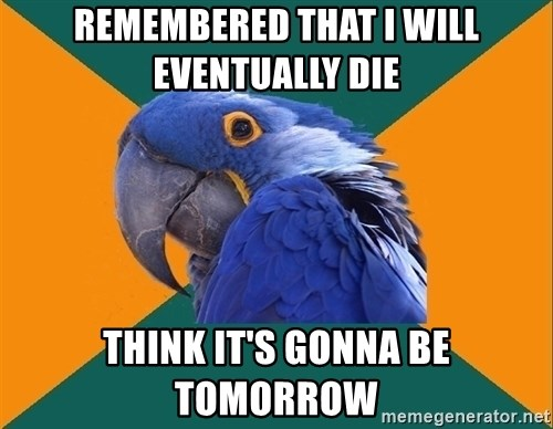 Paranoid Parrot - remembered that i will eventually die think it's gonna be tomorrow
