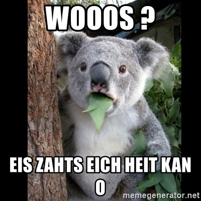 Koala can't believe it - WOOOS ? EIS ZAHTS EICH HEIT KAN O