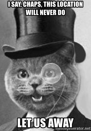 Monocle Cat - i say, chaps, this location will never do let us away