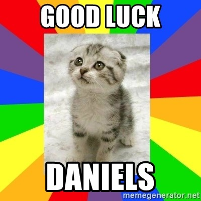 Cute Kitten - Good luck daniels