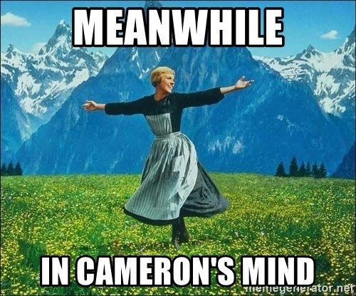 Look at all the things - Meanwhile in cameron's mind