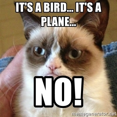 Grumpy Cat  - it's a bird... it's a plane... no!