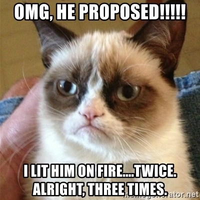 Grumpy Cat  - OMG, he proposed!!!!! I lit him on fire....twice.  Alright, three times.