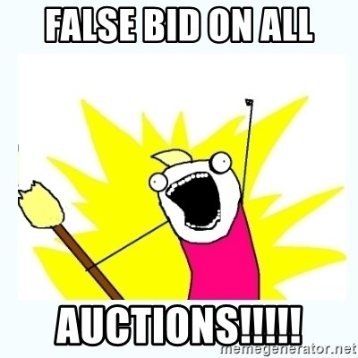 All the things - False Bid on all Auctions!!!!!