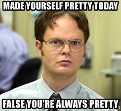 Dwight Shrute - Made yourself pretty today False you're always pretty