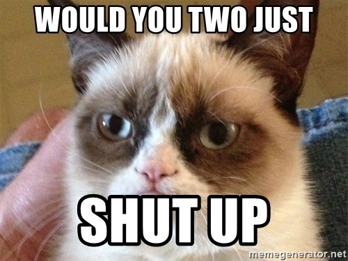 Angry Cat Meme - WOULD YOU TWO JUST SHUT UP