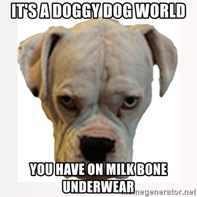 stahp guise - IT'S A DOGGY DOG WORLD YOU HAVE ON MILK BONE UNDERWEAR